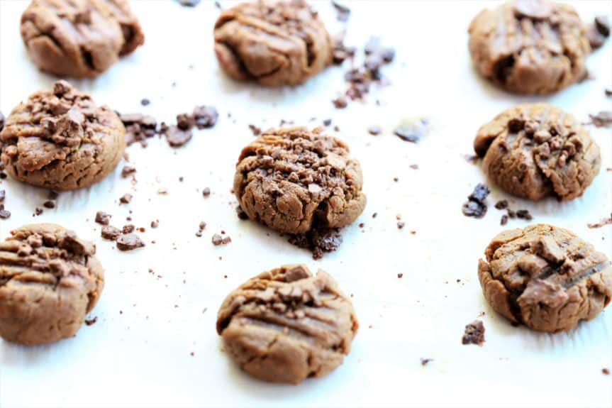 Dairy Free Cookie Bites