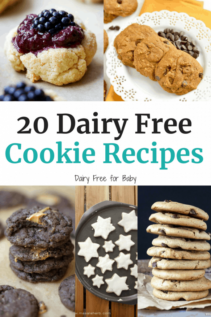20 Delicious Dairy Free Cookie Recipes!