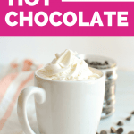 a mug of vegan hot chocolate with a dollop of vegan whipped cream
