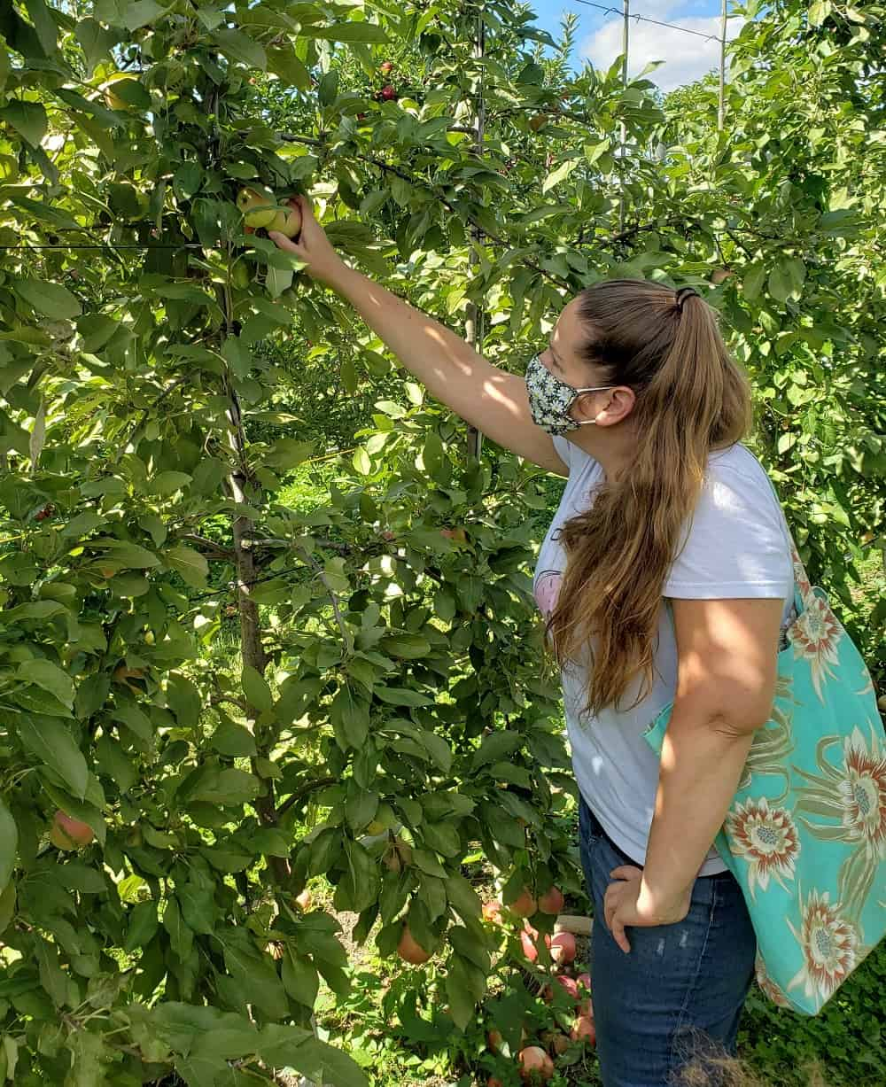 a woman in an orchard picking an apple