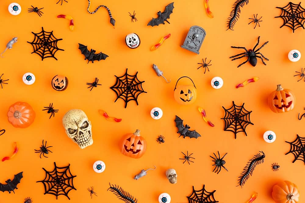 assorted non food halloween treats like fake spiders and skulls on an orange backdrop