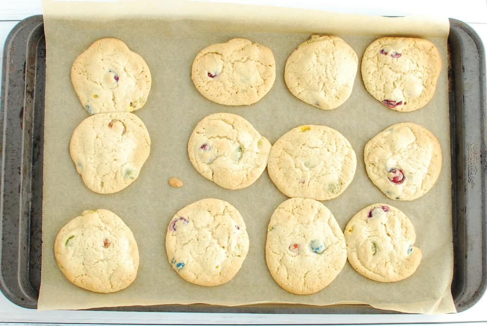 A baking sheet with dairy free M&M cookies after they have come out of the oven.